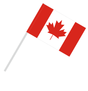 new immigrants in Canada